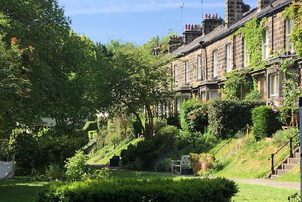 Woodbine Terrace